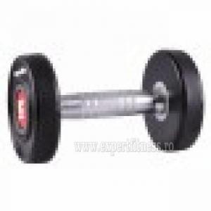 Gantera inSPORTline Profi 24 kg