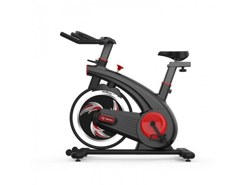 Bicicleta spinning magnetica THEWAY FITNESS  ES200